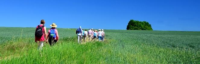 Bliesgau wandergruppe blauer himmel felder
