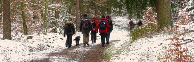 wander gruppe saarland winter